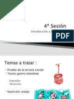 4ª sesión - Absorción y metabolismo