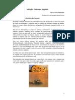 Inibicao, Sintoma e Angustia-Para Uma Clinica Nodaal Das EstruturasNieves Soria Dafunchio