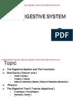 File3-8. Digestive System