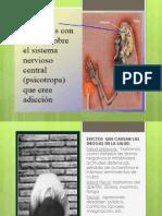 Web Scribd Trabajo EFECTOS  QUE CAUSAN LAS DROGAS EN LA SALUD