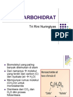 KARBOHIDRAT1