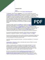 Inversor(TURBIANA Pelton).doc