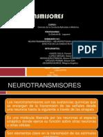 s. Conducta 2 Neurotrasmisores Verano
