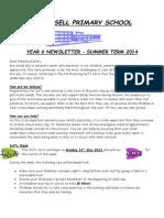 Year 6 Newsletter Summer 2014