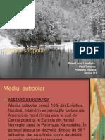 24288859-Mediul-subpolar