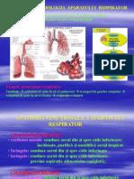 Curs Respirator Asistente