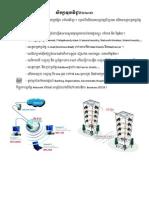 Basic network + Server Khmer