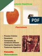 Fascio Las Is