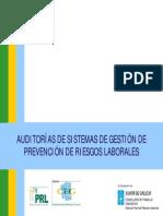Auditorias de Los Sistemas de Gestion de Prevencion de Riesgos Laborales