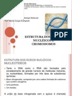 1º Aula - Estrutura Dos Ácidos Nucléicos e Cromossomos
