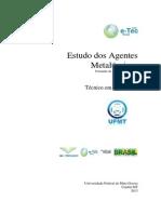 Estudo Dos Agentes Metalúrgicos - IfMG