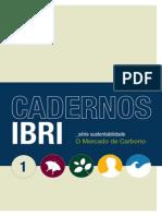IBRI_Caderno_1