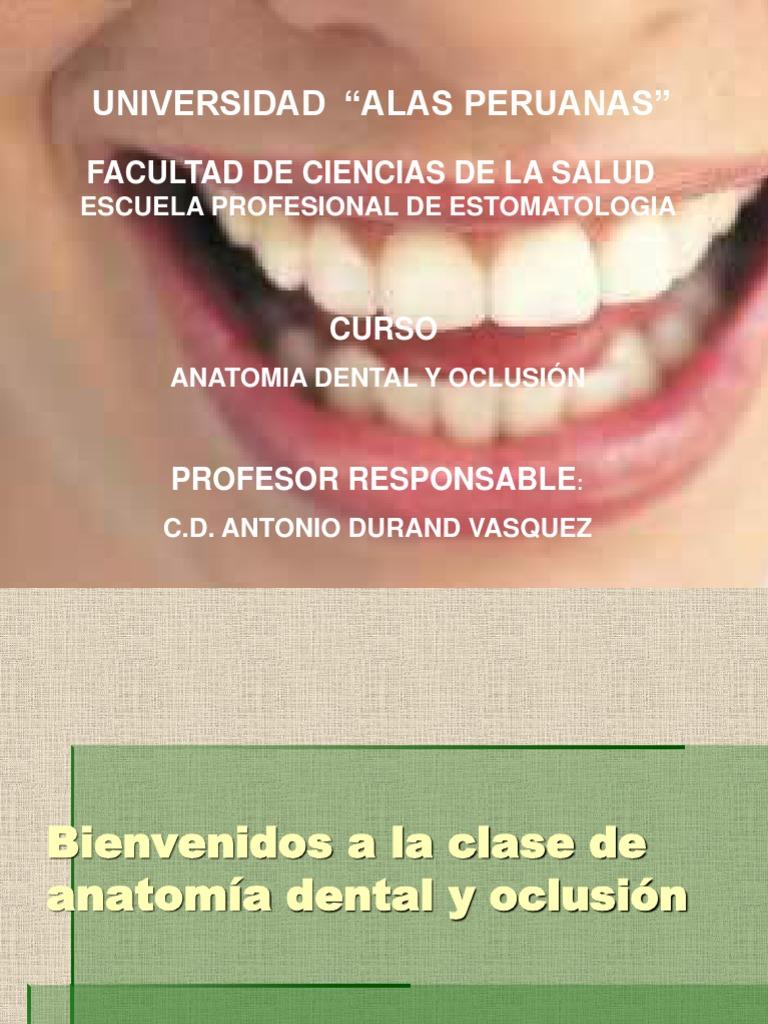 001 Primera Clase Anatomia Dental