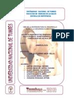 Anatomia Del Aparato Reproductor Femenino y Masculino .. Mythel