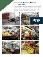 Mercado Central- 2009