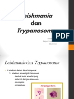 Leismania Trypanosoma Rev 3
