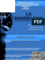 Diapositivas de La Sensibilidad Tema 09