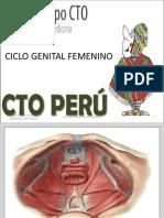 Ginecología 1 Rp Presencial 2da Vuelta