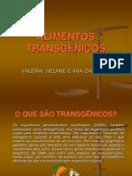 ALIMENTOS TRANSGÊNICOS1
