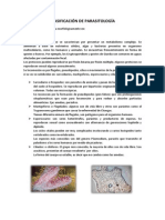 Clasificación de Parasitología