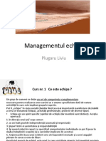 Managementul Echipei - Liviu Plugaru