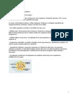 CIENCIAS DE LA SALUD CUATRO APARATO CIRCULATORIO I.pdf