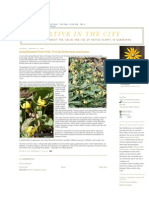 Spring Ephemeral Plant Profile