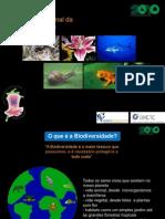 Biodiversidade 8c2baano Cap 201011