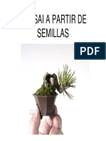 De Semilla a Bonsai