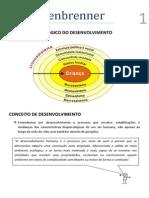 Cultura e Desenvolvimento_Bronfenbrenner