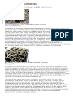 Produção de Mudas de plantas Através de Sementes - Raquel Patro.pdf