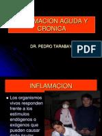 3.Inflamacionaguda y Cronica