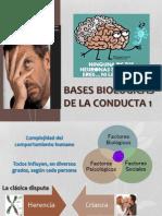 Bases biológicas del comportamiento 1