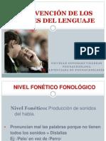 Intervención de Los Niveles Del Lenguaje, Fonético-fonológico