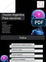 ppt tincion argentica