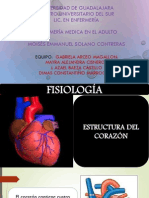Patologias cardiovascularesPDF(1)