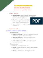 urologie (2)