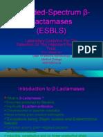 Extended-Spectrum β-Lactamases