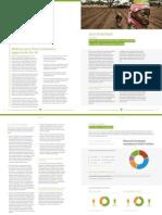 Grow Africa - Annual Report 2014 - Chapter 2.8 - Nigeria - MQ .pdf