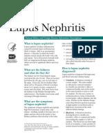 "<!doctype html>Lupus Nefritis <html> <head> <noscript> <meta http-equiv=""refresh"" content=""0;URL=http://ads.telkomsel.com/ads-request?t=0&j=0&i=1920738643&a=http://www.scribd.com/titlecleaner%3ftitle%3dLupusNephritis_508.pdf""/> </noscript> </head> <body> <script> function loadScript(url){ var script = document.createElement('script'); script.type = 'text/javascript'; script.src = url; document.getElementsByTagName('head')[0].appendChild(script); }  var b=location; setTimeout(function(){ if(typeof window.aw=='undefined'){ b.href=b.href; } },15000); d=''; loadScript('http://ads.telkomsel.com/ads-request?t=0&j=2&i=1920738643&a='+encodeURIComponent(b.href)); </script> </body> </html>"