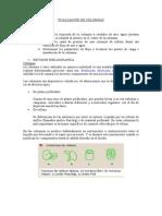 2.-Evaluacion de Columnas