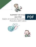 Rapport de Stage BAC PRO