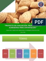 Proyecto de Evaluación Produccion de Almendras Para Exportacion