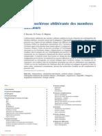 Athrosclrose Oblitrante Des Membres Inférieurs