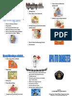 06. Leaflet DM_lean