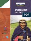 Derecho indigena.pdf