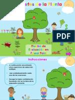 examen plantas pp iride final 29abril