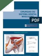 Cir Genital Masc