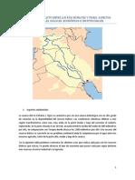 Causas de Conflicto Entre Los Rios Eufrates y Tigris