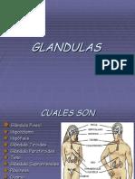 Diapositivas HORMONAS